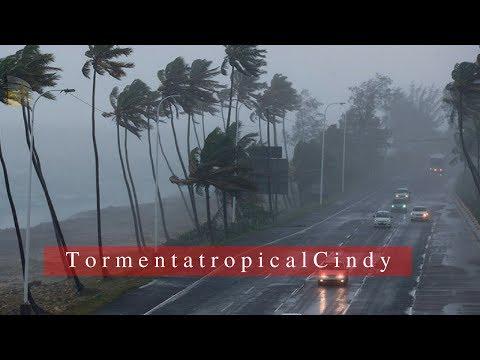 Tormenta tropical Cindy amenaza con inundaciones desde Texas hasta Florida