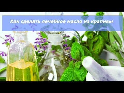 как сделать лечебное масло из крапивы