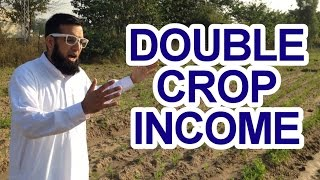 Double Your Crop Income Tip