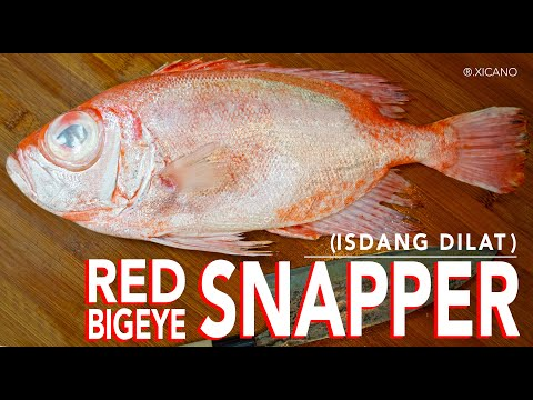 HOW TO CLEAN, FILLET & COOK A RED BIG EYE SNAPPER|| FISH CABBAGE ROLL