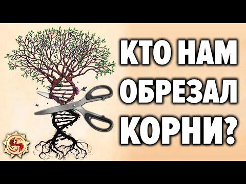 Кто заставил нас забыть предков ? Устройство славянской родовой системы