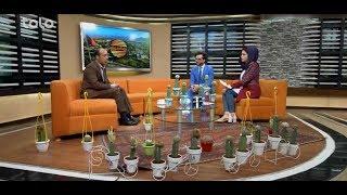 بامداد خوش - باغداری - صحبت ها با فریدون فروتن در مورد زقوم