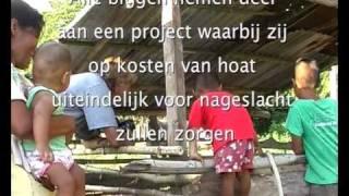 hoat promotie NL