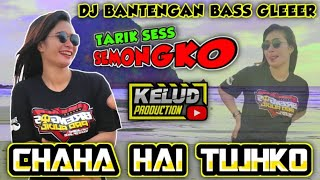 Download Lagu DJ BASS GLERR BANTENGANN HOREG   CHAHA HAI TUJHKO mp3
