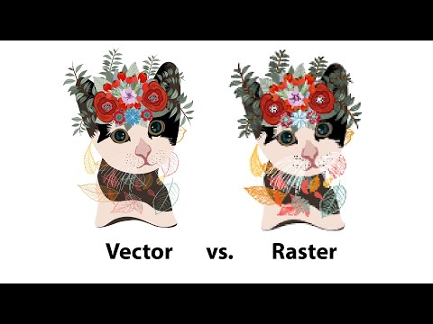Raster so với Vector: Sự khác biệt và khi nào nên sử dụng