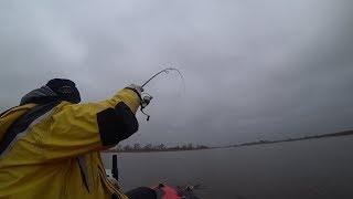Не плохая рыбалка в ДЕКАБРЕ по ОКУНЮ на спиннинг