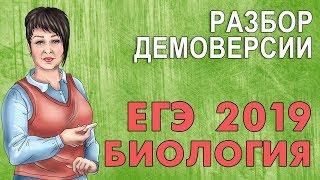ЕГЭ БИОЛОГИЯ 2019 | РАЗБОР ДЕМОНСТРАЦИОННОГО ВАРИАНТА!
