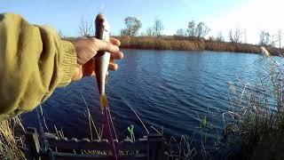 Закрытие сезона жидкой воды.Рыбалка на фидер.Обед на природе.Закрытие сезона.