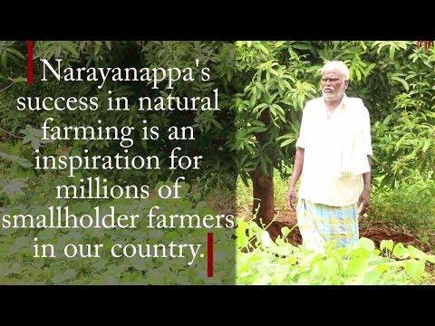 Natural Farming II Smallholder Farmer II Success II Inspiration