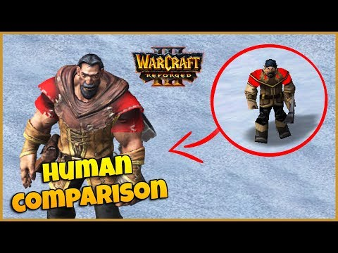 Warcraft 3 Reforged Comparison | Human Characters & Buildings