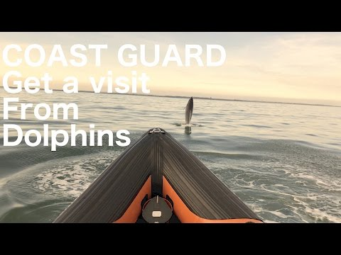 The Irish Coast Guard get a visit from Dolphins in Dublin
