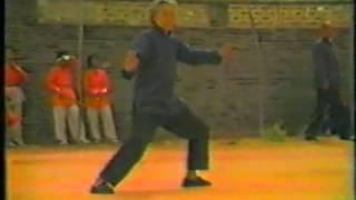 1984 陳家溝にて:老人たちの演武 陳氏太極拳