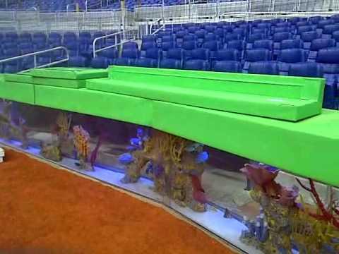 marlins park aquariums finally residents