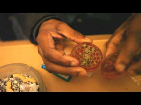 How to Build a Zoot by B-Zang