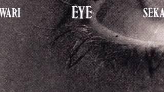 [新曲]ドッペルゲンガー SEKAI NO OWARI(Nakajin)歌ってみた