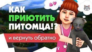 The Sims 4 | Как приютить питомца? | Много собак | + возвращаем