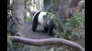 Yun Zi we wish you well