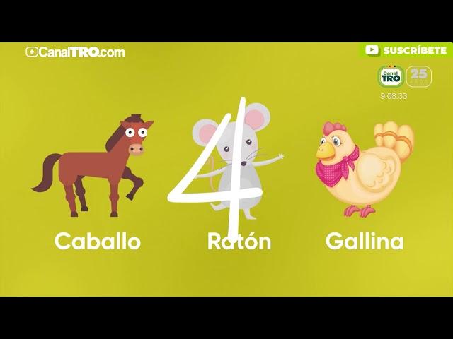 Adivinanza de los animales  - Lengua castellana