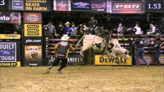 PBR Bull Fighters