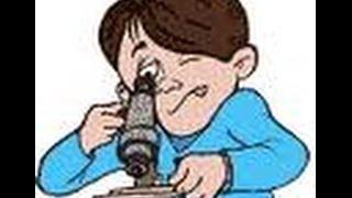 فحص البراز الكامل الجزء الثالث الفحص الميكرسكوبى