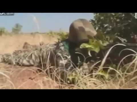Military training in Mali / FUNNY