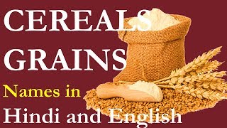 Download lagu Cereals Names and grains name in Hindi and English अन ज क न म MP3