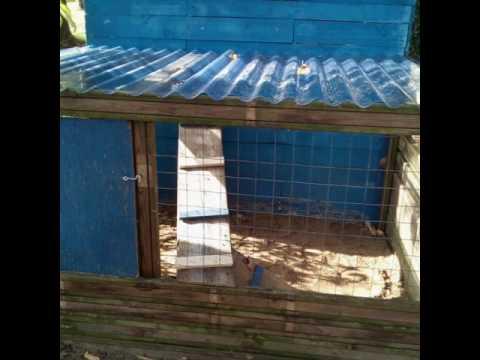 Mon clapier en bois fait maison doovi for Construire cabane lapin