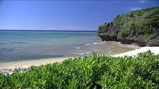 BEGINと過ごす沖縄オーシャンウィークエンド! ~癒しの島人ぬ宝~