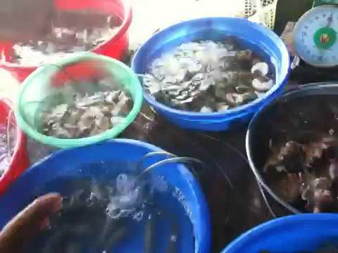 Vietnam seefood delicatessen