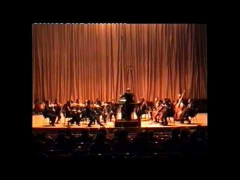 Tchaikovsky Serenade for Strings 3rd movement