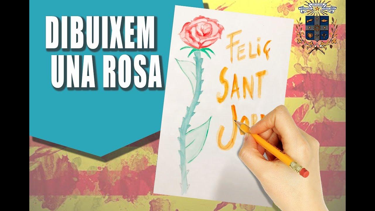 Dibuix d'una Rosa