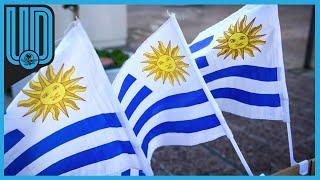 los hechos ocurrieron la noche de este domingo, cuando el sospechoso acosó presuntamente a una mujer de 46 años en el hotel donde se hospeda la selección uruguaya     #Uruguay #CopaAmérica #SeleccionUruguay