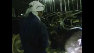 Hasegai Dairy Farm 002
