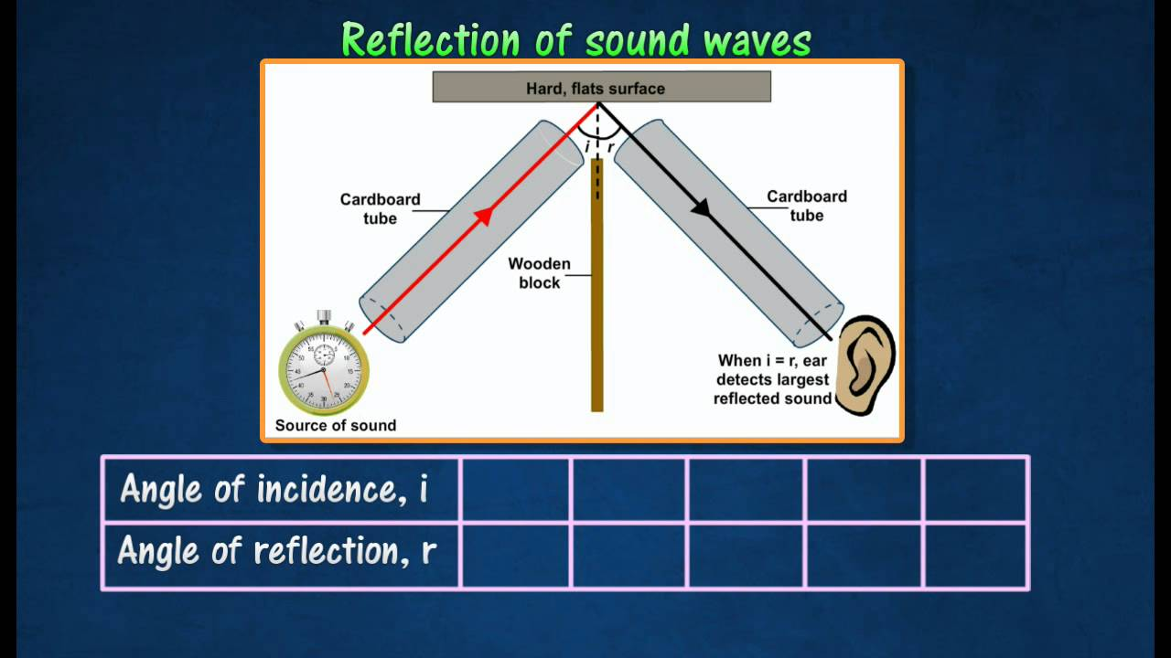 diagram ocean waves diagram for waves reflection of sound waves youtube