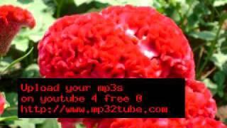 ABC - 01 Azhagai Pookuthe.mp3