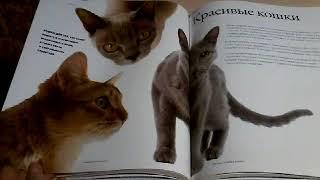 Книги Все Породы Кошек   10 среда января 2018 г