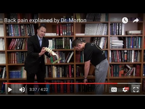 Back pain explained by Dr. Morton