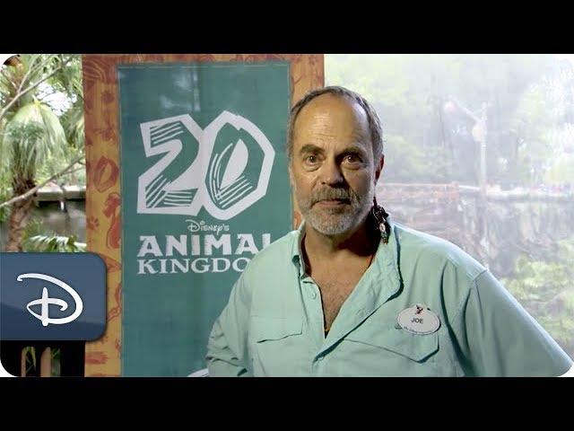 inside-disney-parks-disney-s-animal-kingdom-episode