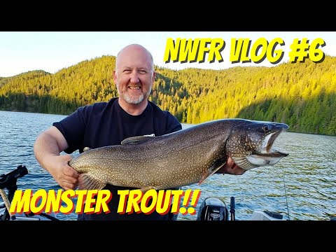 Monster Trout Fishing Catch And Cook | VLOG0006