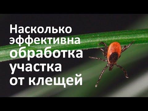 Купить дачу в Содружестве пригород Ростова-на-Донуиз YouTube · Длительность: 5 мин41 с