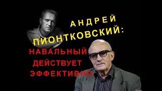 Андрей Пионтковский: Навальный действует эффективно