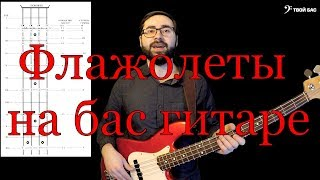 Флажолеты на бас гитаре