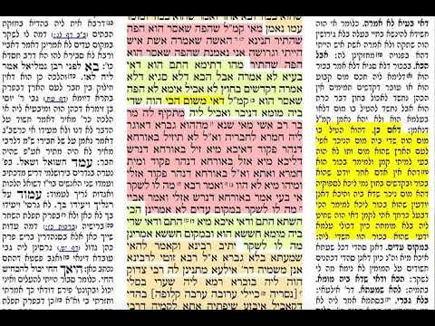 הדף היומי מסכת בכורות דף לו 36 חמישי י״ח אייר תשע״ט Daf yomi Bechoros daf 36 Shmuel Navon