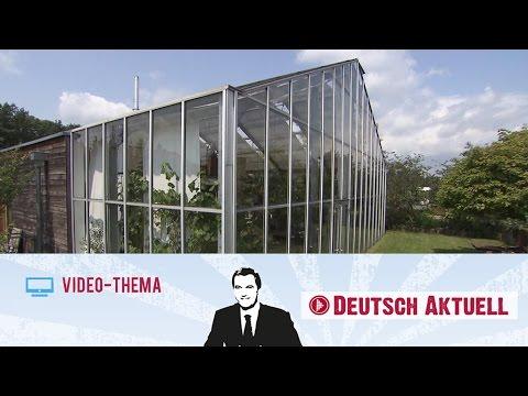 Deutsch lernen b2 c1 eine wohnung zwischen pflanzen for Wohnung dekorieren lernen