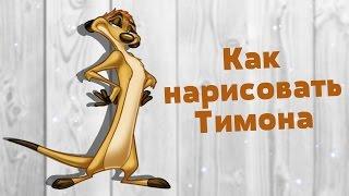 Как нарисовать Тимона | How to draw Timon