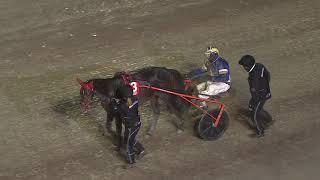 Vidéo de la course PMU PRIX LIKE A HORSE AMATORSERIE AVD 11