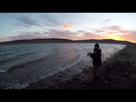 Brown And Rainbow Trout Overnight Trip To Eucumbene Dam N.S.W.