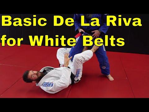 Basic De La Riva Sweep for White Belts with Position Details