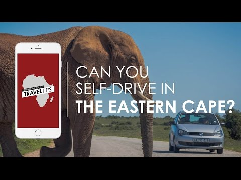 Can you self-drive the Eastern Cape? What car would you need? Rhino Africa's Travel Tips