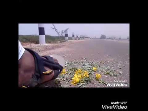 Mira Mira video song || Katamarayudu || AMARAPURAM Boy's ||
